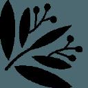 Bloom & Wild Voucher Codes