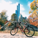 centralparksightseeing.com Voucher Codes
