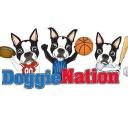 doggienation.com Voucher Codes