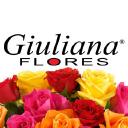 giulianaflores.com.br Voucher Codes