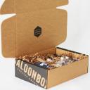 saloonbox.com Voucher Codes